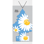 Little Trees® Daisy Fields Fragrance (72)